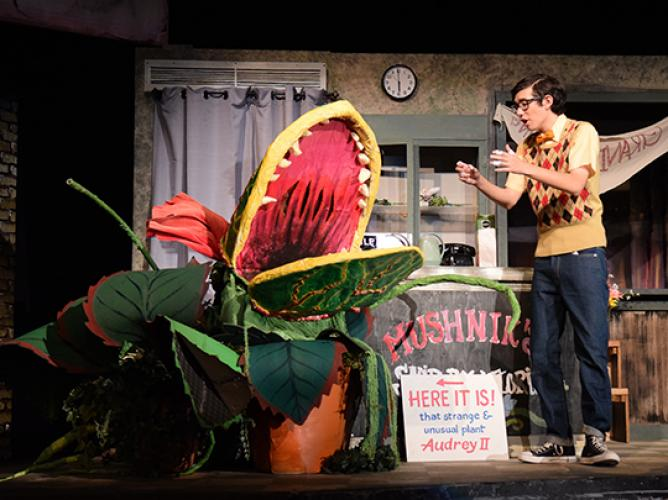 Little Shop of Horrors - 2016