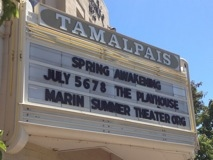 spring marquee